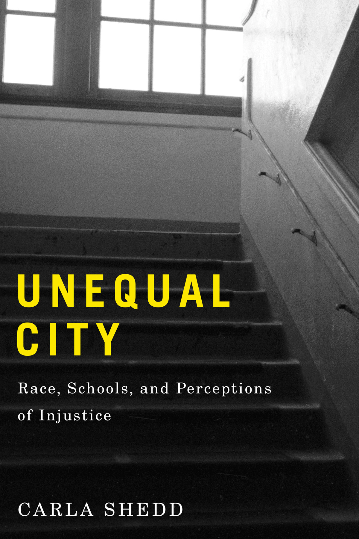 Unequal City. Race, Schools, and Perceptions of Injustice